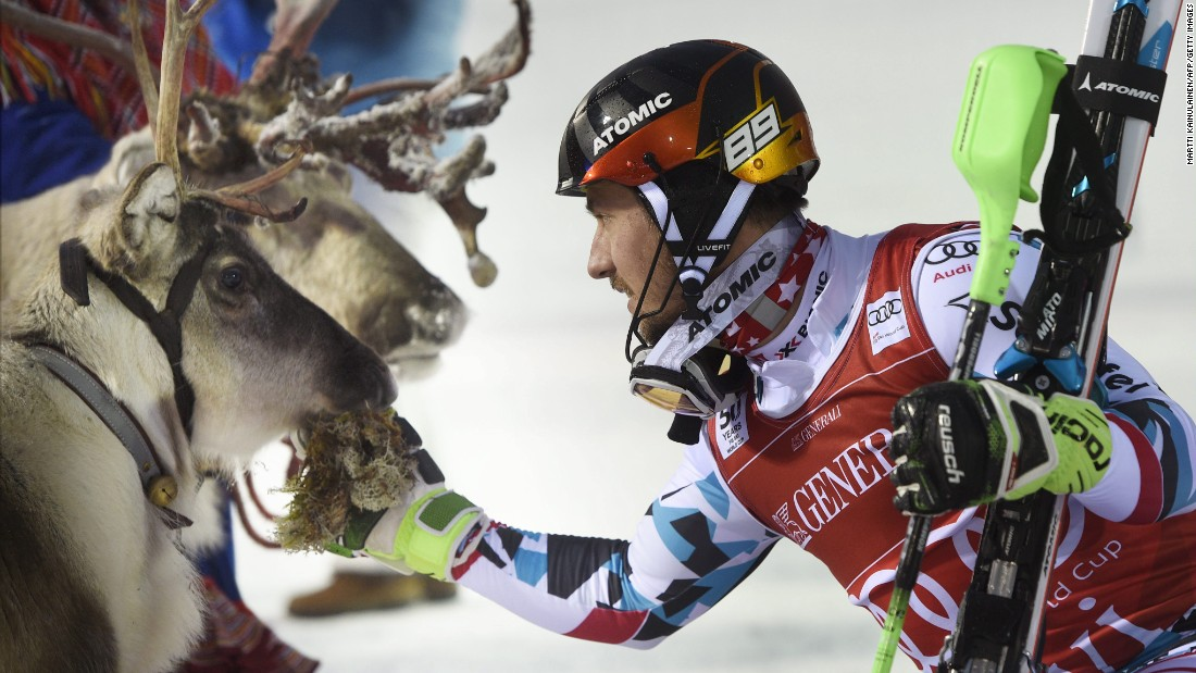 """The<a href=""""http://edition.cnn.com/2016/11/16/sport/alpine-skiing-world-cup-slalom-levi-finland-reindeer/""""> tradition</a> extends to the men's competition, too. Marcel Hirscher of Austria greets his prize reindeer, Leo."""