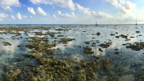 Swallow Reef drops off more than 3,000 meters (10,000 feet)  into deep ocean.