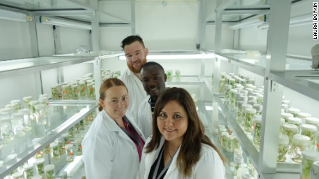 Computation biologist Dr. Laura Boykin is pioneering the use of genomics to identify strains of cassava disease.