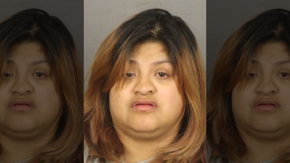 Abigail Hernandez, 21, is a DACA recipient and an illegal immigrant who was arrested last week in Rochester, N.Y. for making terroristic threats against students in a high school, officials said.