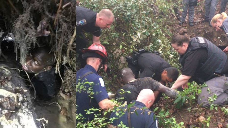 Georgia police rescue fleeing suspect from drainage ditch | GLA NEWS ...